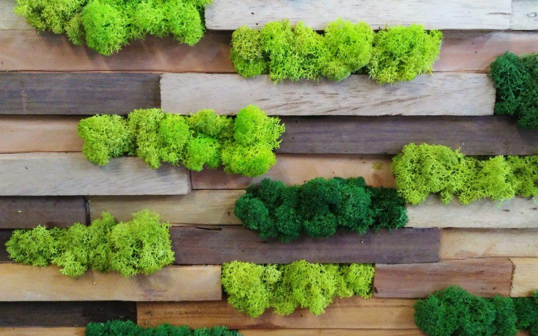 La madera en los jardines verticales