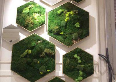 cuadros-hexagonales-diverso-moss-musgogreen-lor-rive-milan