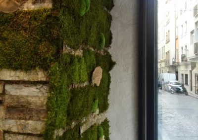 jardin-vertical-de-musgo-tree-and-moss-musgogreen-cafe-central-granada